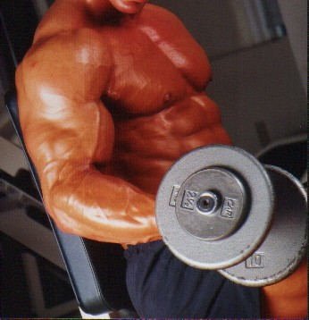 tips for increase muscle growth online at american-supps.com