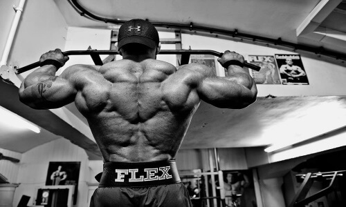 buy mass gainer online on american-supps.com