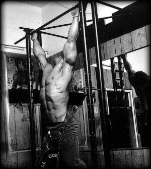 Bodybuilding and workout plans online at american-supps.com