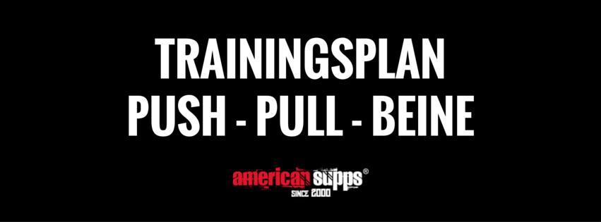 Push Pull Beine Team Andro, Push Pull Beine Trainingsplan, Push Pull Beine 2 mal die Woche