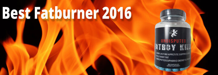 Best Fatburner 2016