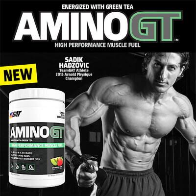 gat amino gt kaufen