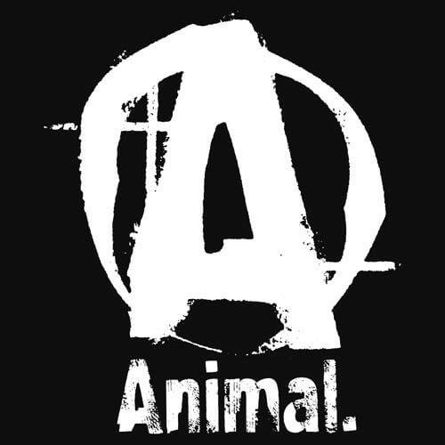 animal pak kaufen animal pak wirkung und nebenwirkungen