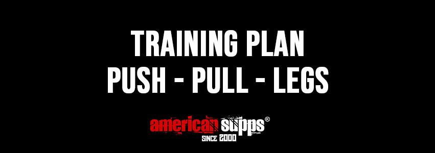 Push Pull Legs Team Andro, Push Pull Legs Training Plan, Push Pull Legs 2 a week